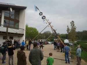 Tce stellt erstmals maibaum auf tc ergoldsbach - Wintergarten bliemel ...